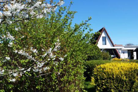 Sandmann Huus - Rückseite mit Garten