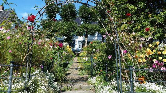 Wundergarten Blankenese